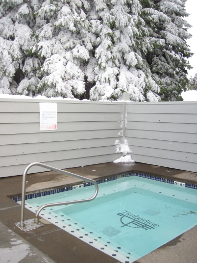 Timberline hot tub