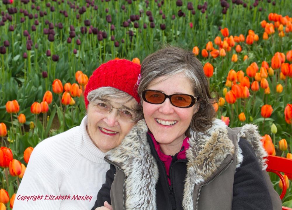 Tiptoe Through the Oregon Tulips (2/6)
