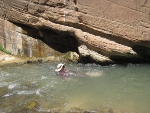Zion River Narrows