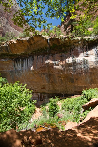 Zion's Emerald Pools waterfall #2 (see how tiny Jeff is down there?)
