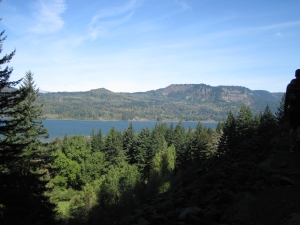 Columbia River view from the forested trail