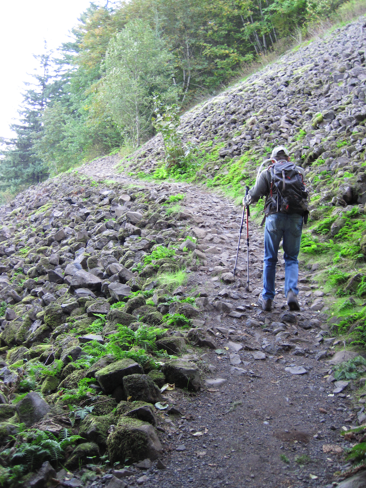 Angel's Rest Hike in the Columbia River Gorge (2/4)