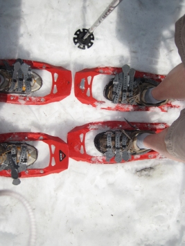 I doubt we'll be wearing shorts, but we're looking forward to some winter snowshoeing.