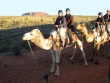 Riding camels at sunset in Uluru