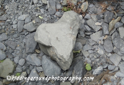 Heart rock found in Kenai Fjords National Park