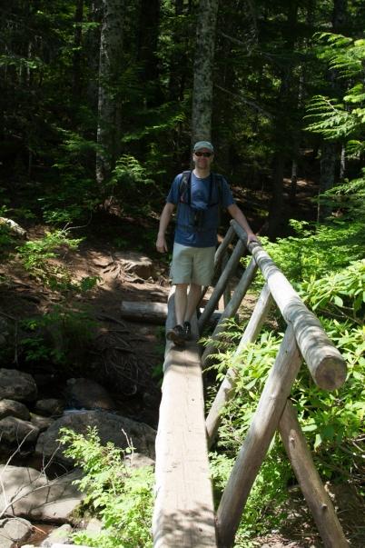 Footbridge over the stream