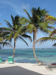 The view from our room at Tranquility Bay, Belize