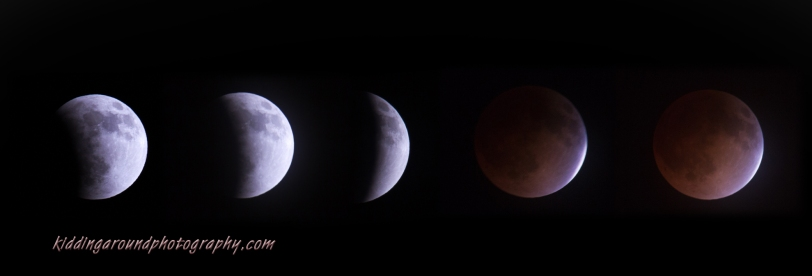 Lunar eclipse 2014. Do you think one day we might even be able to travel to the moon?