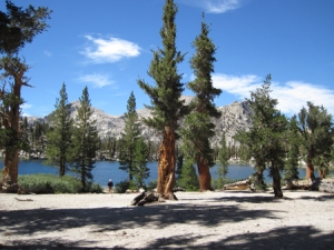 Little Claire Lake in Sequoia's backcountry