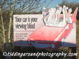Your car is your blind!