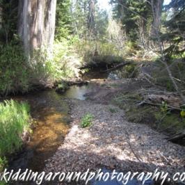 Lost Lake Mt. Hood Oregon