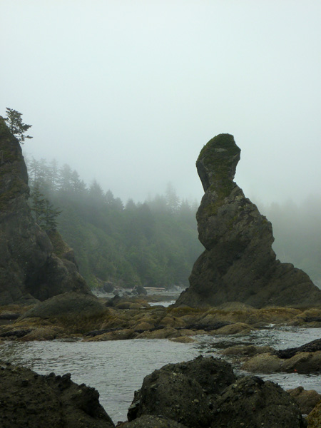Coastal formations