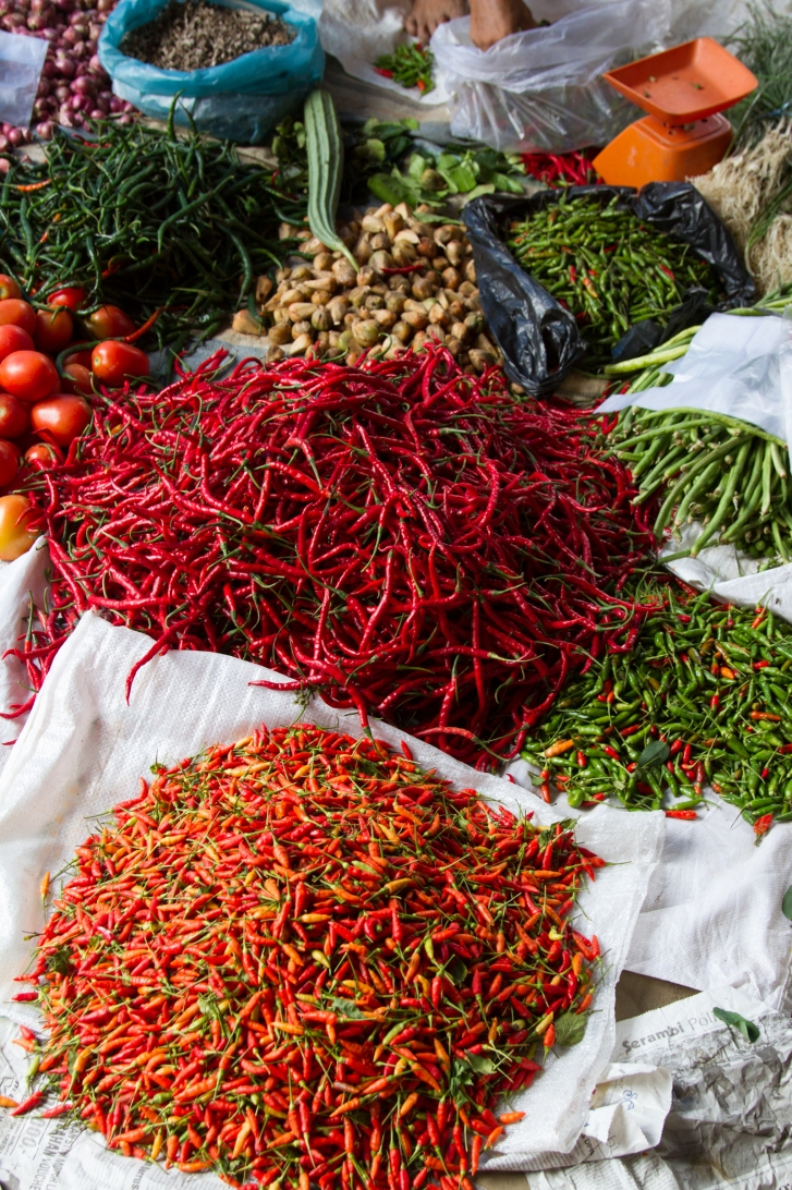 Chiles Indonesia