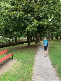 Lovely Whittington Park
